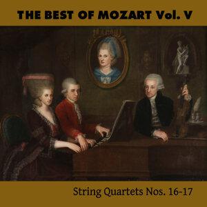Mozarteum Quartett 歌手頭像
