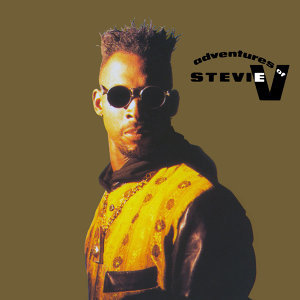 Adventures Of Stevie V 歌手頭像