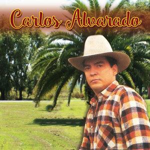 Carlos Alvarado 歌手頭像