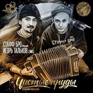 Игорь МирИмиР Тальков, Stuff bro 歌手頭像