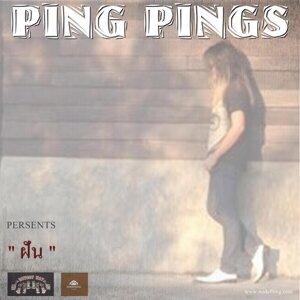 Ping Pings