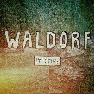 Waldorf 歌手頭像
