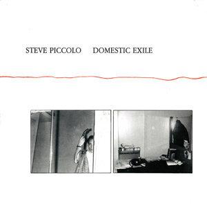 Steve Piccolo 歌手頭像