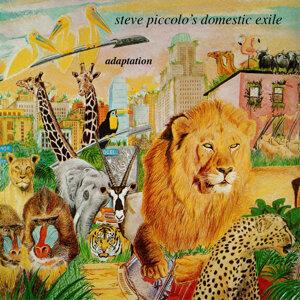 Steve Piccolo's Domestic Exile 歌手頭像