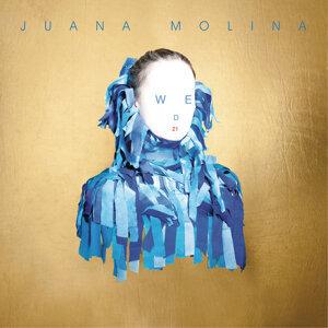 Juana Molina 歌手頭像
