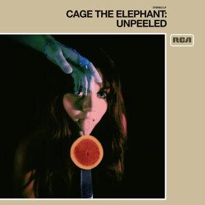 Cage The Elephant 歌手頭像