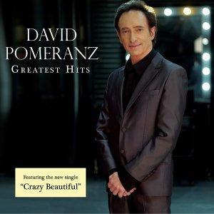 David Pomeranz 歌手頭像