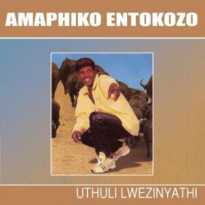 Amaphiko Entokozo 歌手頭像