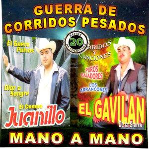 El Gavilan De La Sierra, El Compa Juanillo 歌手頭像