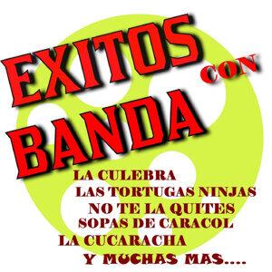 Los Necios y Sonora Band 歌手頭像