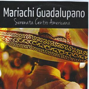 Mariachi Guadalupano 歌手頭像