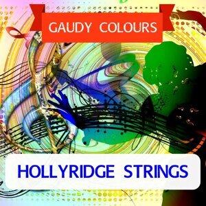 Hollyridge Strings 歌手頭像