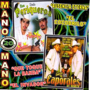 Dueto Los Caporales Del Monte, Dueto Los Periqueros 歌手頭像
