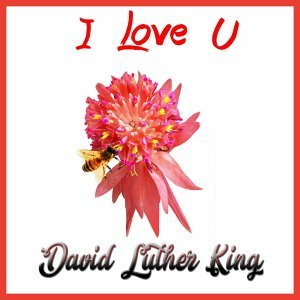 David Luther King 歌手頭像