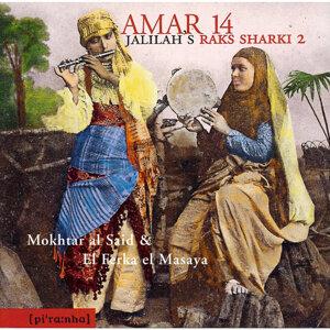 Mokhtar al Said & El Ferka el Mesaya 歌手頭像