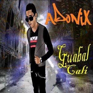 Adonix 歌手頭像