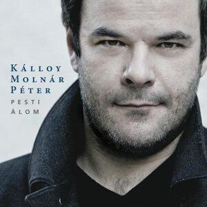 Kálloy Molnár Péter 歌手頭像