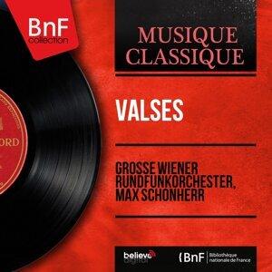 Grosse Wiener Rundfunkorchester, Max Schönherr 歌手頭像