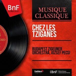 Budapest Zigeuner Orchestra, József Pécsi 歌手頭像