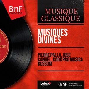 Pierre Palla, José Candel, Koor Pro Musica Bussum 歌手頭像