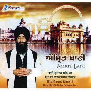 Bhai Gudrev Singh 歌手頭像