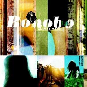 Bonobo 歌手頭像