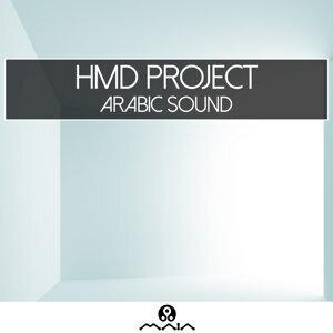 HMD Project 歌手頭像