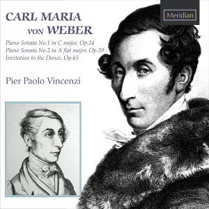 Pier Paolo Vincenzi 歌手頭像