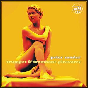 Peter Sander 歌手頭像