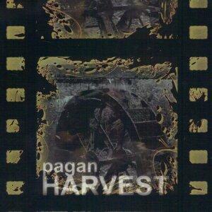 Pagan Harvest 歌手頭像