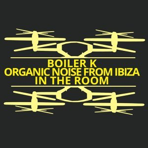Boiler K, Organic Noise From Ibiza 歌手頭像