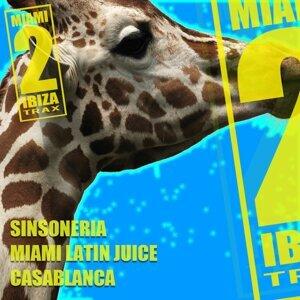 Sinsoneria, Miami Latin Juice 歌手頭像