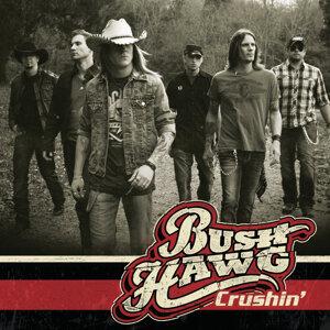 Bush Hawg 歌手頭像