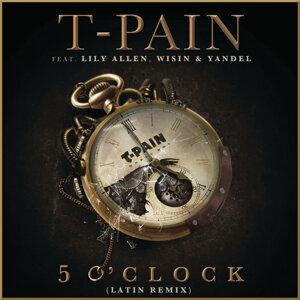 T-Pain feat. feat. Lily Allen, Wisin & Yandel 歌手頭像