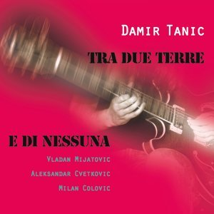Damir Tanic 歌手頭像