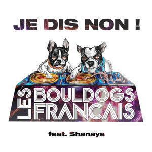 Les Bouldogs Français Feat Shanaya