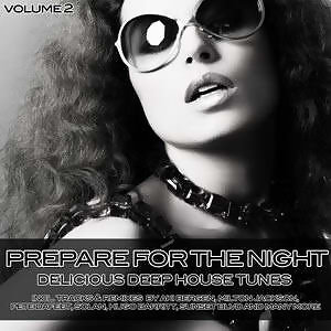 Prepare For The Night - Delicious Deep House Tunes Vol. 2 歌手頭像