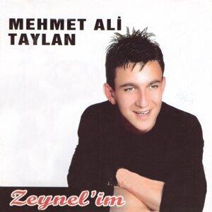 Mehmet Ali Taylan 歌手頭像