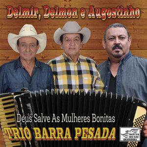 Trio Barra Pesada 歌手頭像