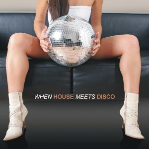 When House Meets Disco 歌手頭像