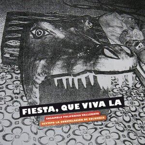 Ensamble Polifónico Vallenato & Sexteto La Constelación De Colombia 歌手頭像