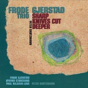 Frode Gjerstard Trio 歌手頭像