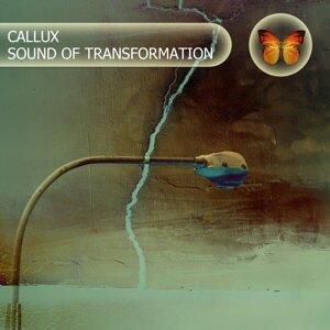 Callux 歌手頭像