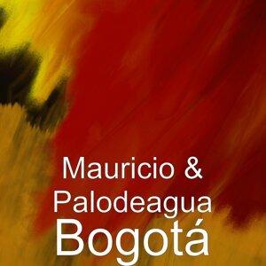 Mauricio & Palodeagua 歌手頭像