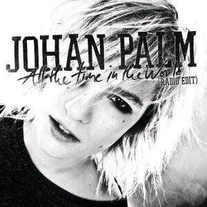 Johan Palm 歌手頭像