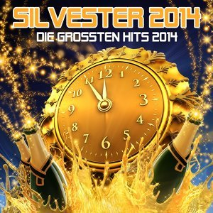 Silvester 2014 歌手頭像