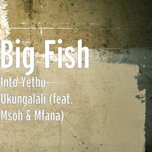 Big Fish 歌手頭像