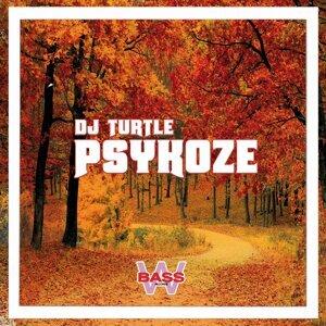DJ Turtle 歌手頭像