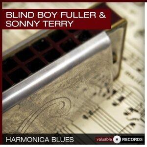 Blind Boy Fuller 歌手頭像