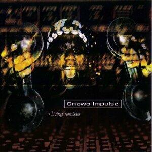 Gnawa Impulse 歌手頭像